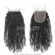 Lace Top Closure (4*4) Kinky Curly Virgin Human Hair